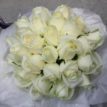 whiteroses