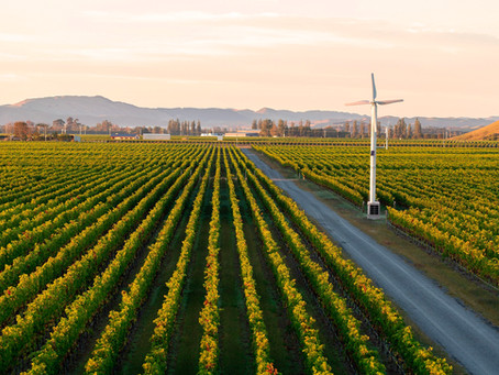 Winemaker commits to using 100 per cent renewable energy