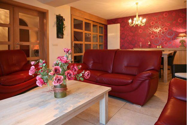 Maison_Fiche-Maisons-de-vacances-104406-02-Neufchateau-salon-851291-1L.jpg