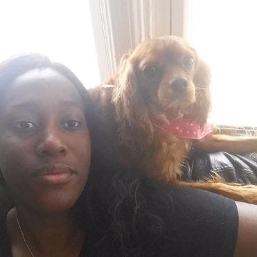 Doggie Goddess Pet Services