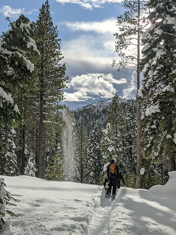 winter snowshoe hikes Lake Tahoe