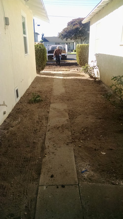 Before: Walk Way