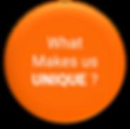 What Makes Us UNIQUE - Circle.png