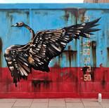Swan on Rust wall