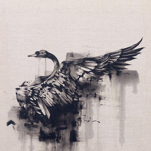 Black Swan Raw Pure