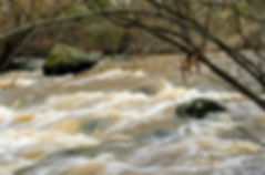 riverblur.JPG
