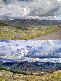 field and mountain ridge in Colorado with horses