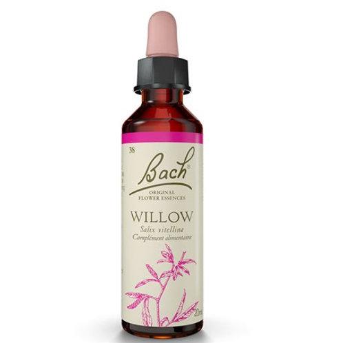 Willow 20ml