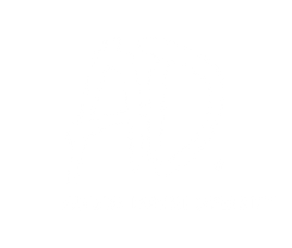 A.D. Audio Development, high end mobile audio drivers.  Vipera, 100 series, 10 series, trend series.  Slim line midbasses and woofers, softdome tweeters.