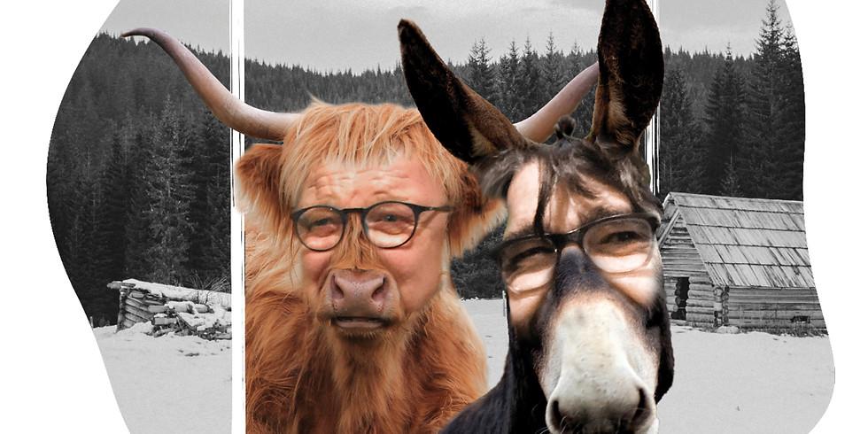 Ox und Esel sind wieder da