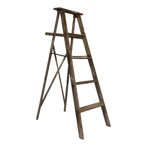 Stanley Ladder