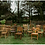 Thumbnail: Wood Dining Chair (Assorted)