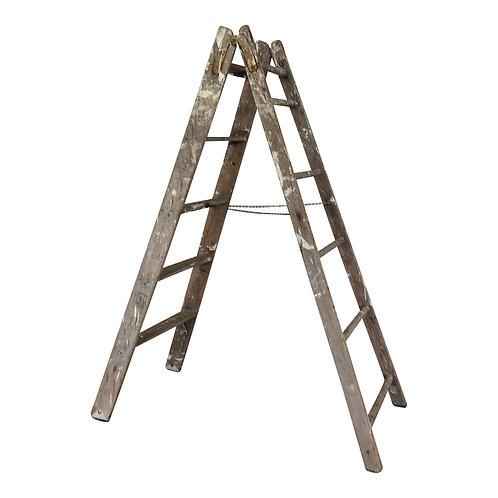 Dan Ladder