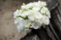 flower-393051__480[1]_edited.jpg