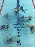 Synchronised swimmers.jpg
