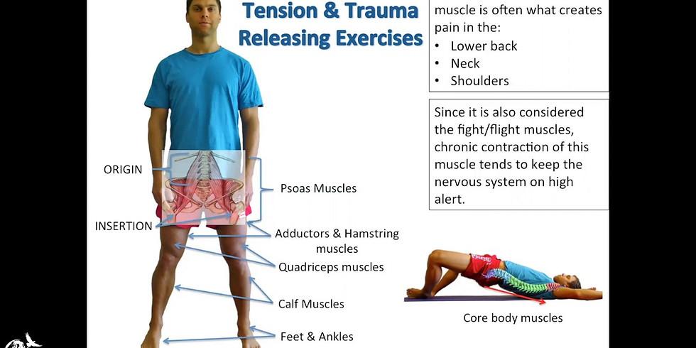 Trauma Release Exercises (TRT) Workshop