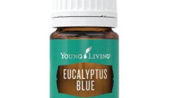 Eucalyptus Blue Essential Oil