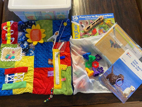 Did you know- Custom Socialization programs and Activity Kits for at Home and In Care Communities!
