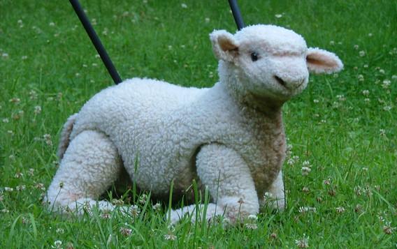 Gypsy Lamb Puppet