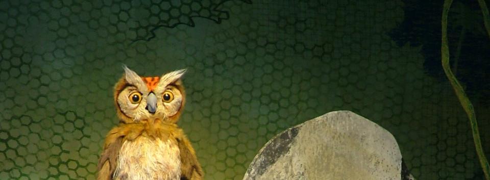Go Diego Go Owl Puppet