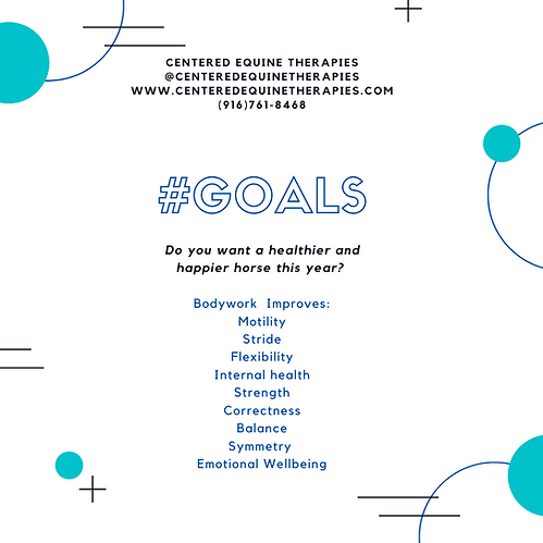 New Year Goals Social Media Post (1).png