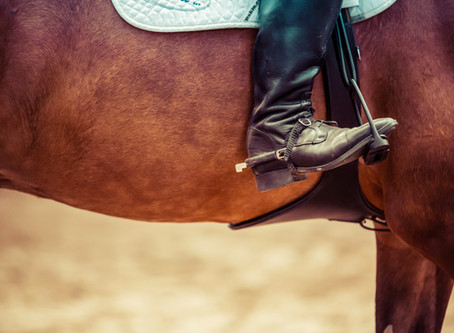 A Review On Horses, Healing And Helping Ourselves