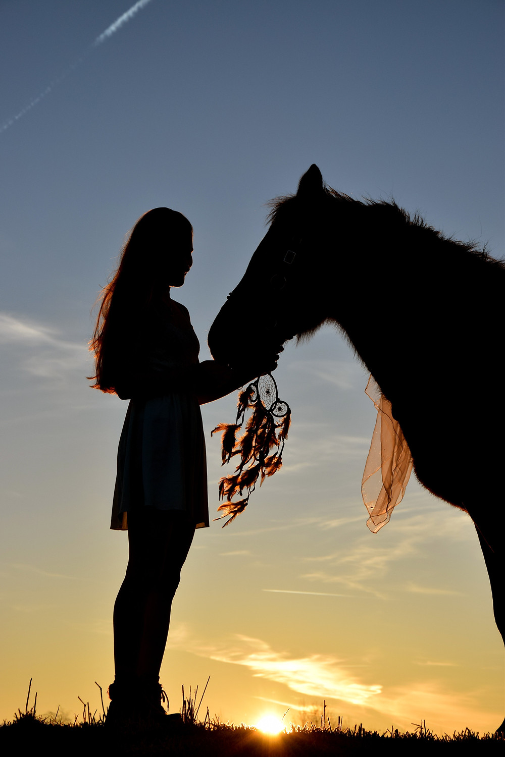Native American healers with horses