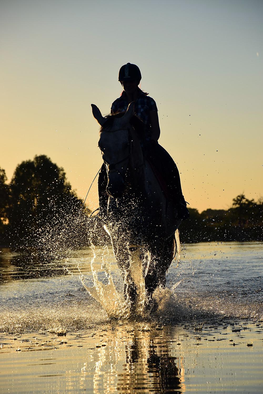 riding at sunrise