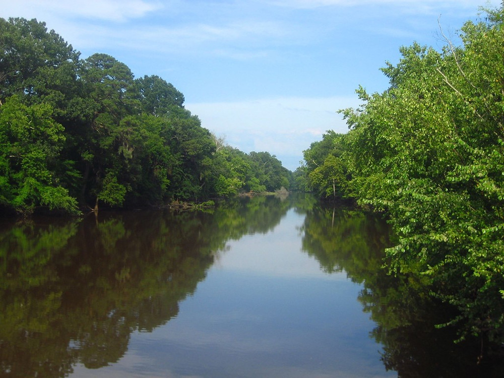 Tar River at Greenville, NC
