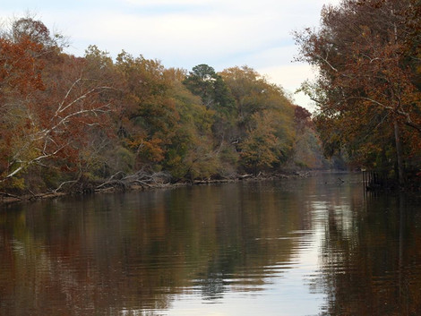 Haunted Paddle offers a spooky tour of the Tar