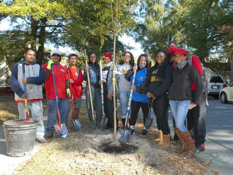 Tree planting event is Saturday
