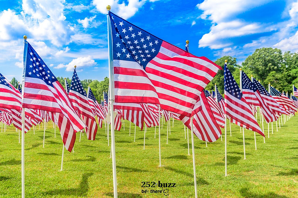 Field of Honor flag display at the Greenville Town Common