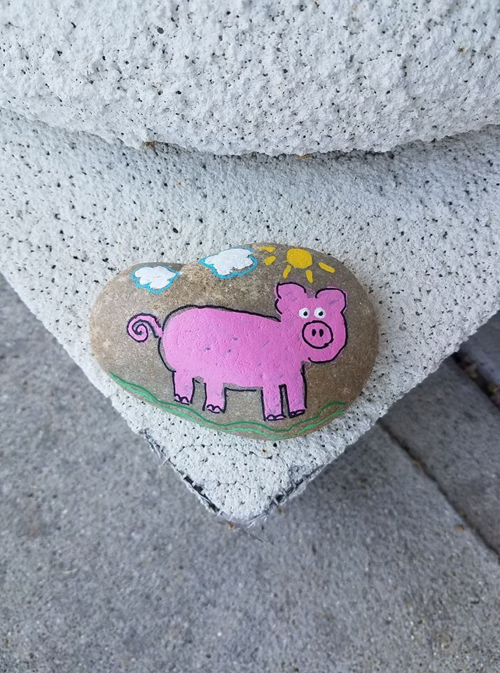 GreenvilleNCRocks pig