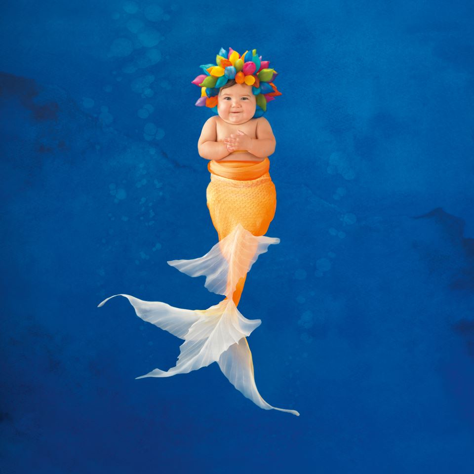 Anne Geddes image from 2015 Under the Sea wall calendar