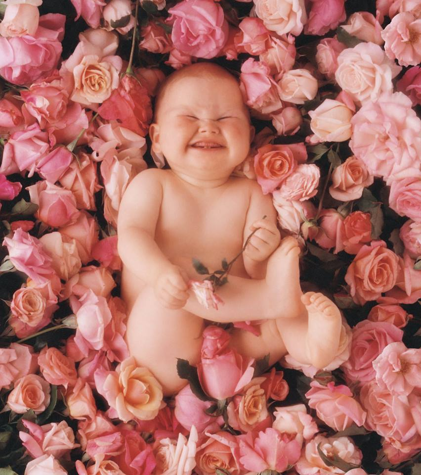 Anne Geddes image Baby with Roses