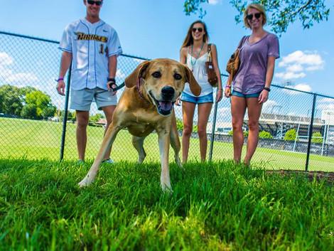 ECU's Bark at the Park is April 29