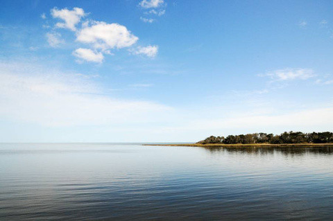 Pamlico Sound side of Hatteras Island (Web photo)