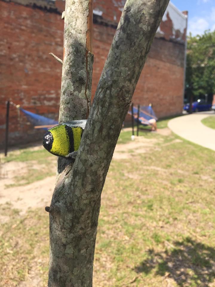 GreenvilleNCRocks bee