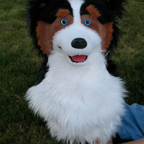 Commissioned Dog Hand Puppet