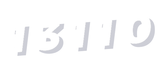 13110.png
