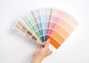 Ask Action Painters Dunedin re colour