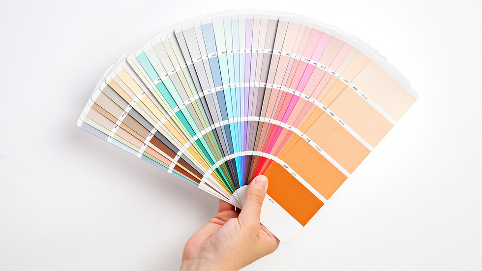 In-Home Paint Consultation
