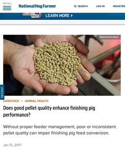 "National Hog Farmer article: ""Does good pellet quality enhance finishing pig performance?"""