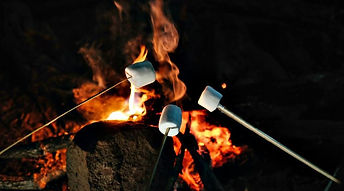 marshmallowscampfire.jpg