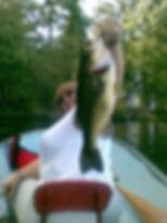 big fish 09.jpg