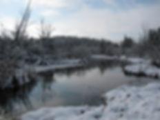 winterscenedick.jpg