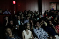 RIFF 2013 Audience