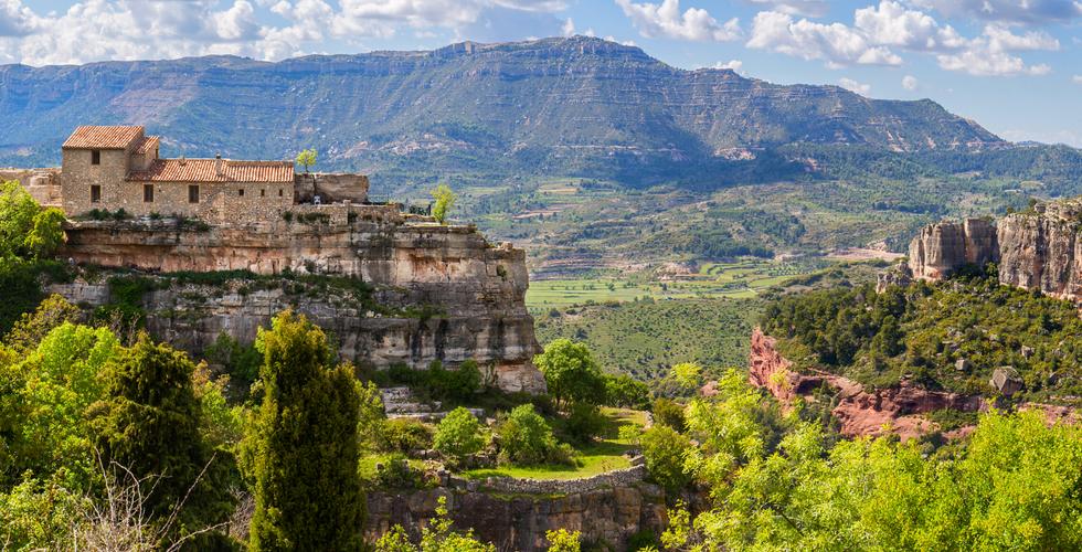 El Priorat, terra d'oli i vi
