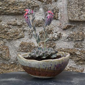 Céramique Trémoureux Jardinière Grès.JPG