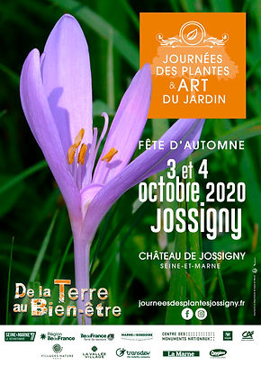 Affiche JDP-Aut.2020+logos.jpg